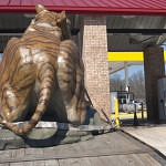 Brenau Tiger Sculpture Arrival
