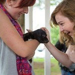 Brenau students McKenzie Stevens, left, and Elaina Fourman play with a puppy under the gazebo on Brenau's Gainesville campus. The puppies were provided by the Hall County Animal Shelter as a stress relief during finals week.
